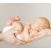 Донор яйцеклетки,  Суррогатная мама